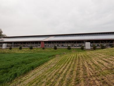 Vantagens da Energia Fotovoltaica para o Agronegócio